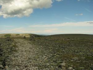 Le paysage nordique du sommet du mont Jacques-Cartier.